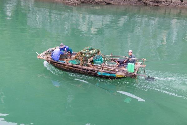Laos Vietnam 5D 7944 Final