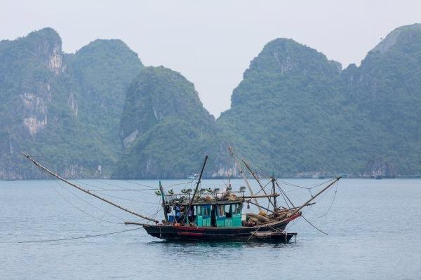Laos Vietnam 5D 7993 Final