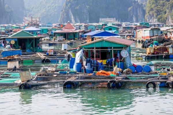 Laos Vietnam 5D 8025 Final