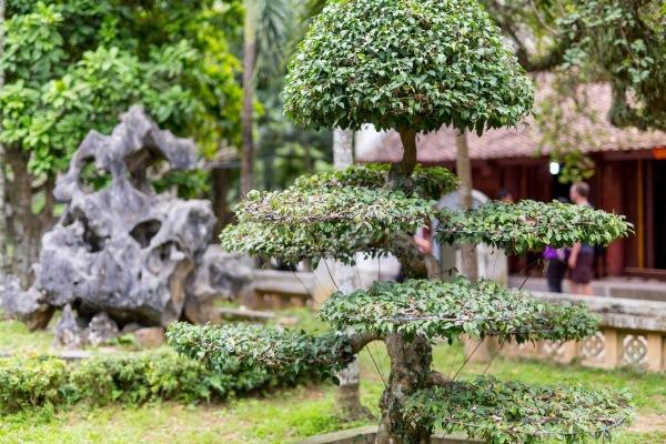 Laos Vietnam 5D 8047 Final