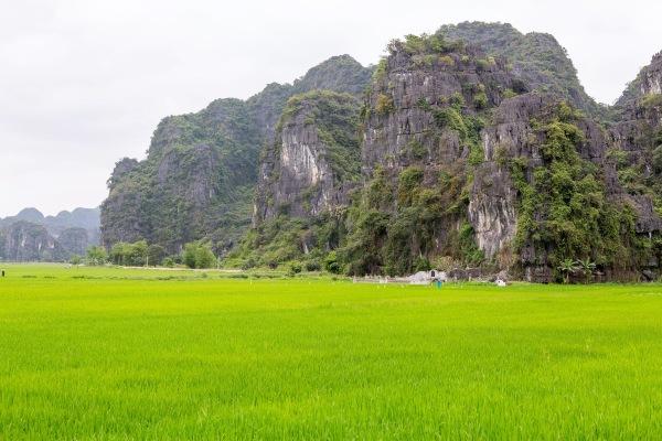 Laos Vietnam 5D 8076 Final