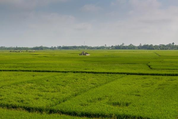 Laos Vietnam 5D 8198 Final